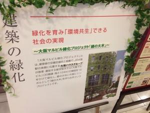大阪マルビル緑化プロジェクト